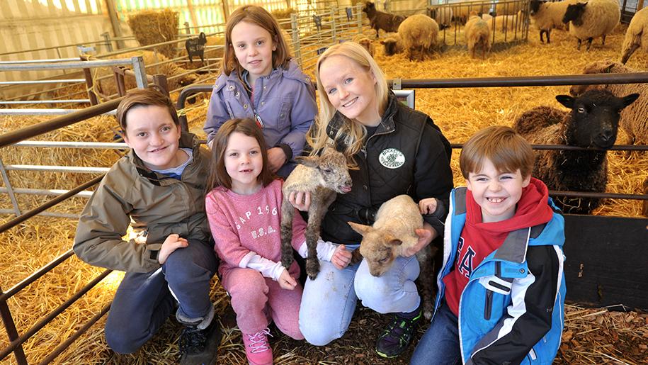 Bocketts Farm Park Family