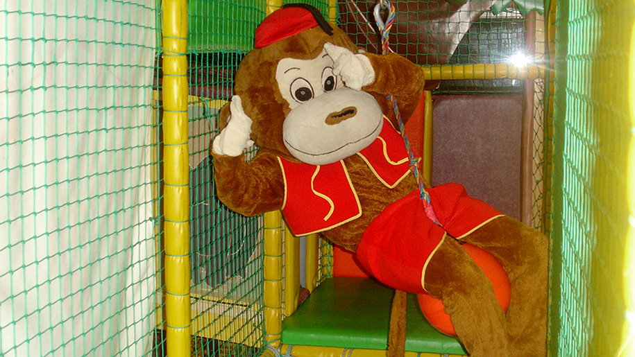 monkey in soft play area