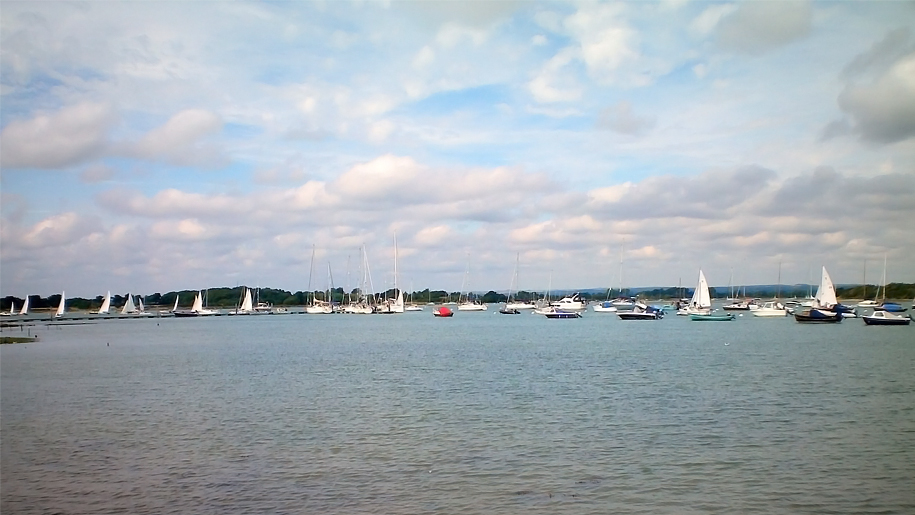 sail boats on the water