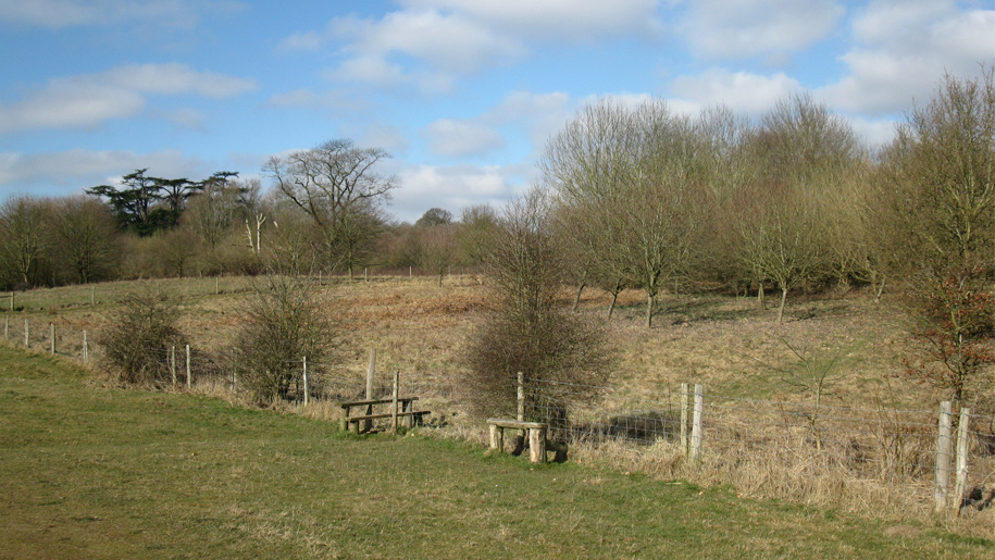 view of deer park