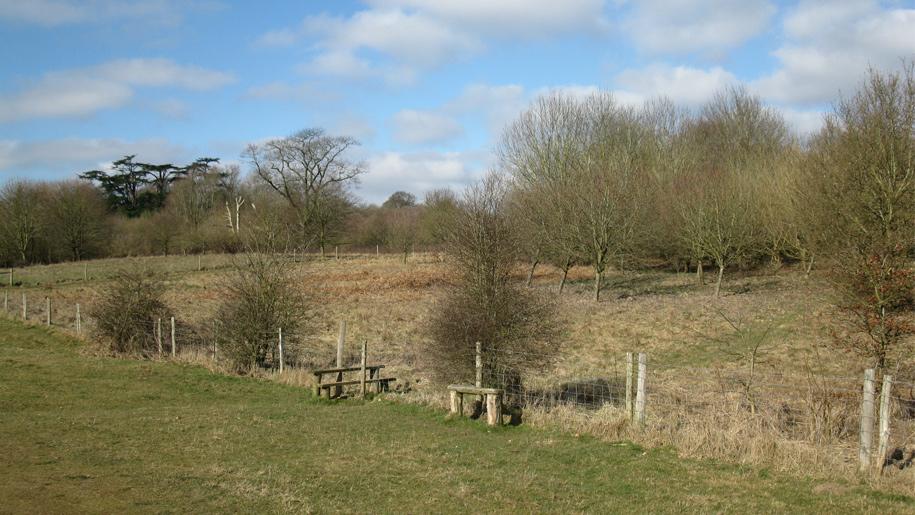 view of deer park