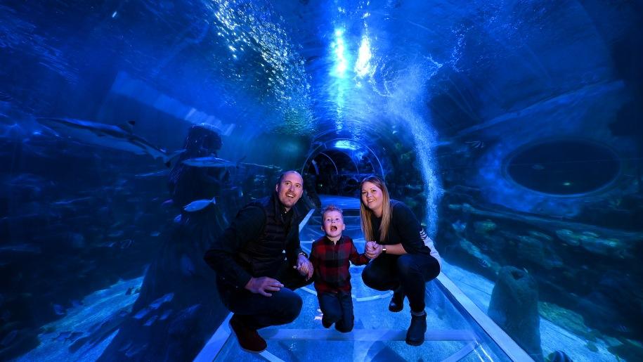 Family at SEA LIFE