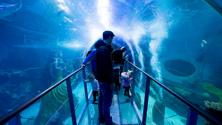 Sea life centre deals uk