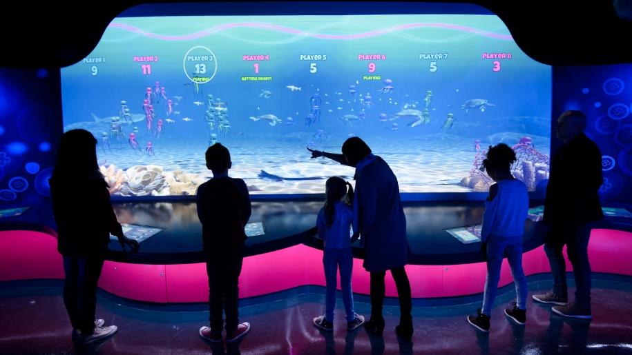 families playing jellyfish game at aquarium
