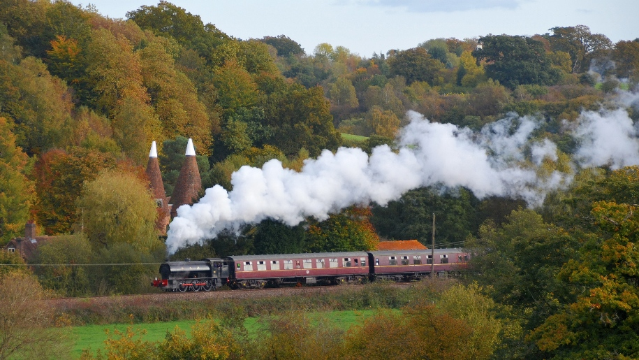 steam train going past autumnal trees