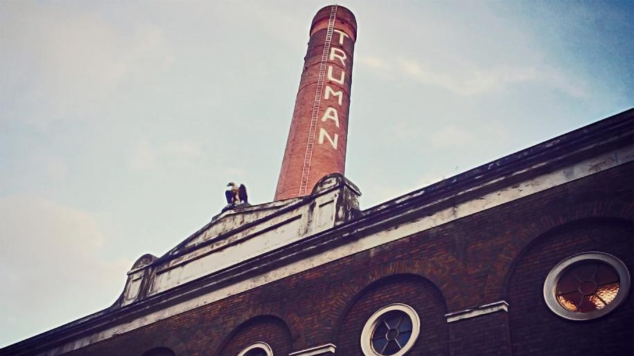 truman chimney