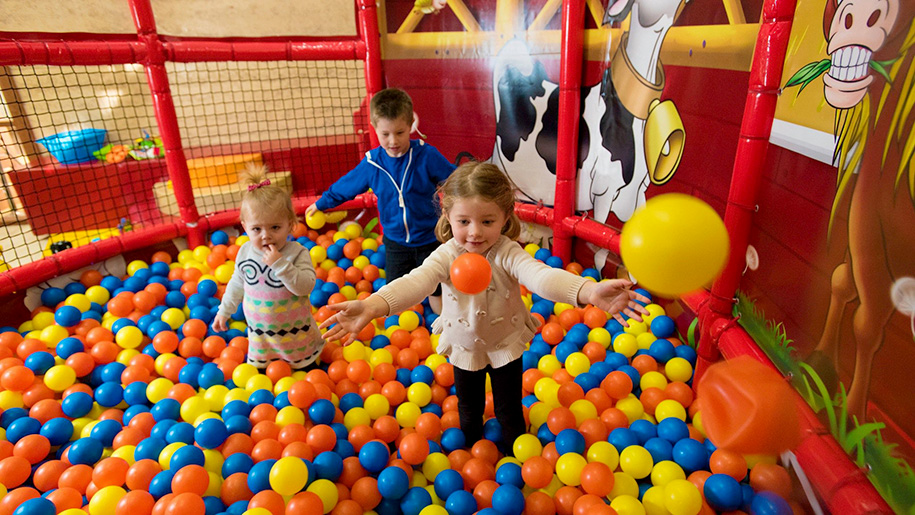 children playing in ball pool