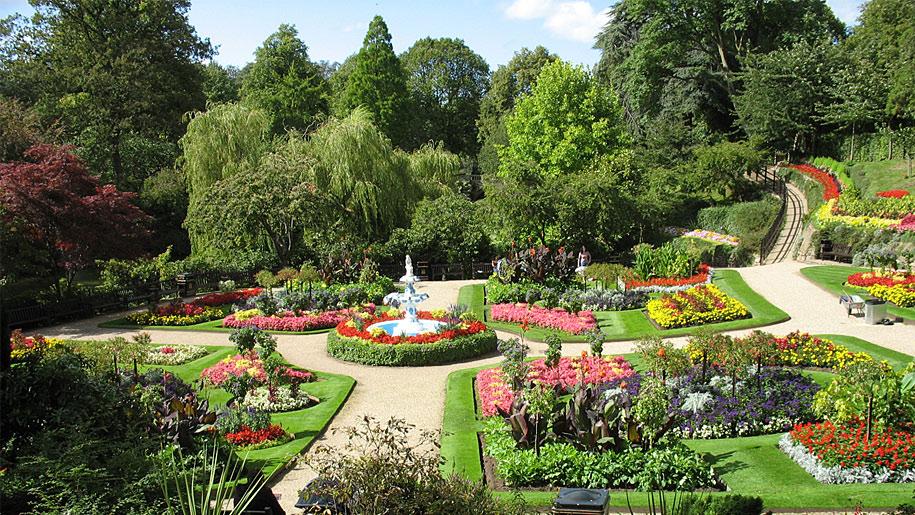 flowers in park