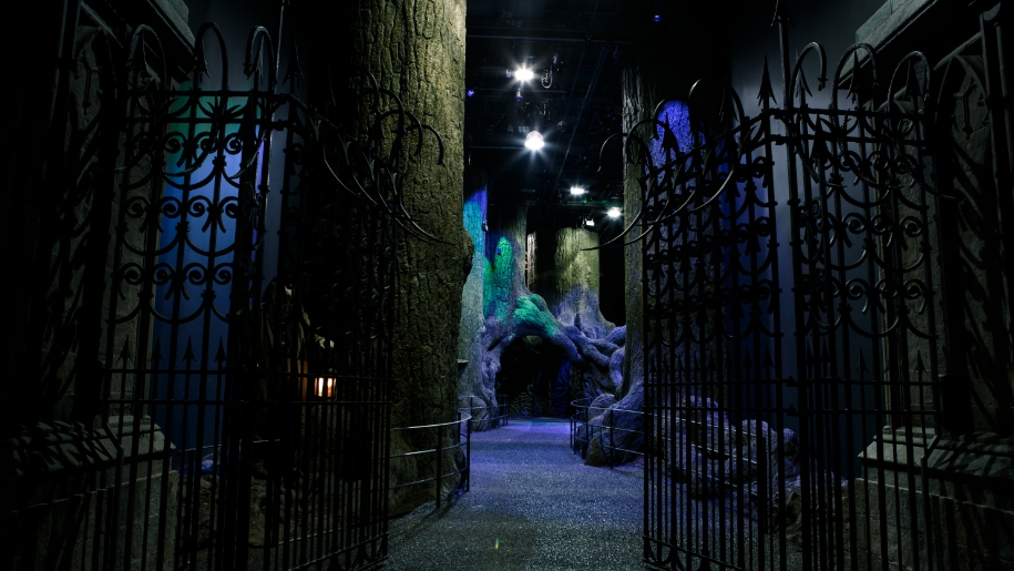 forbidden forest at WB studio tours