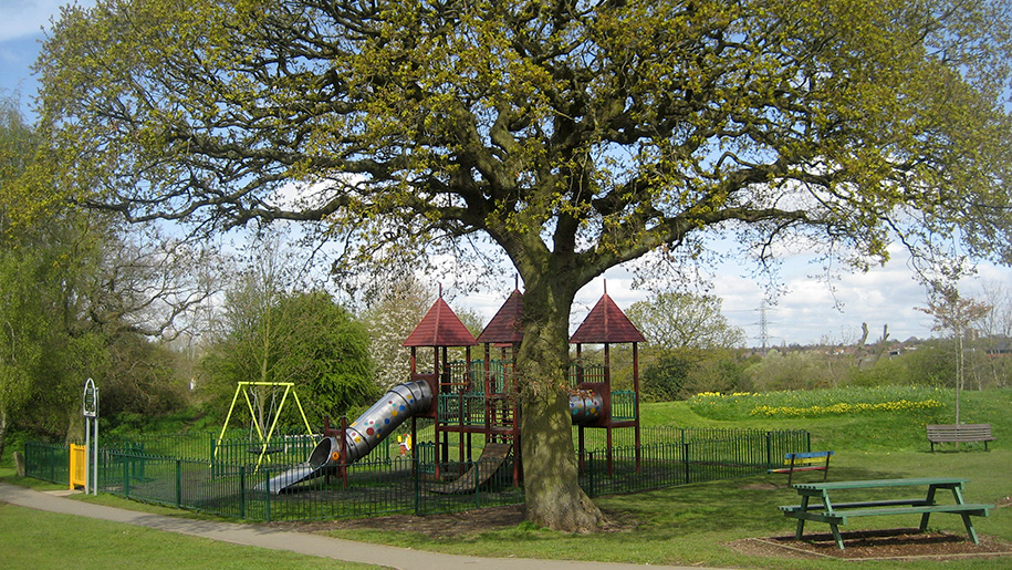 play area by tree