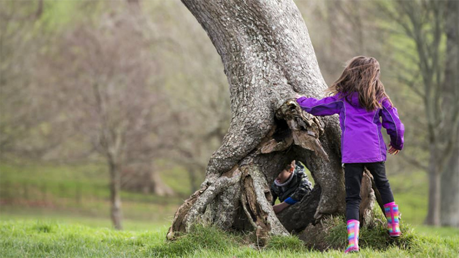 girl playing under tree