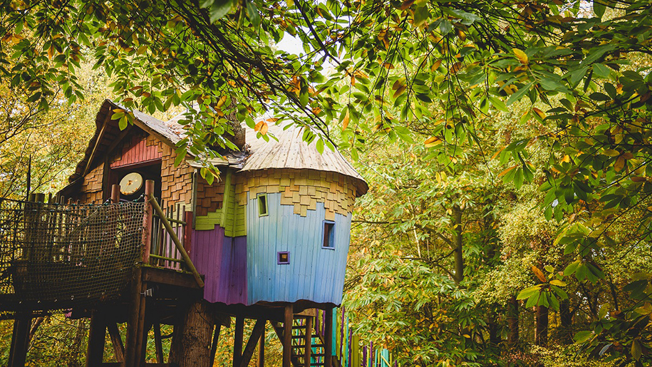 colourful huts in woods