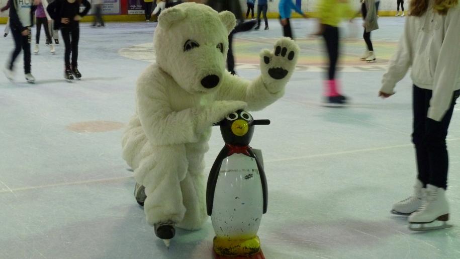 polar bear and penguin on ice