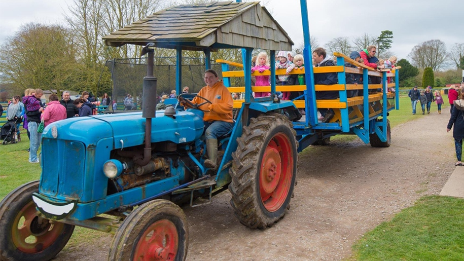 cholderton charlie's Farm tractor ride with kids