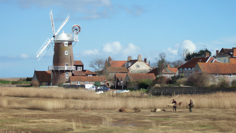 windmill and marsh land