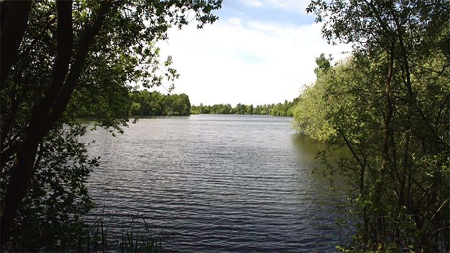 daneshill lake