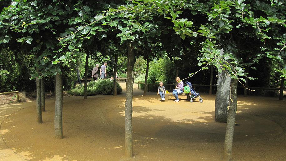 family under trees