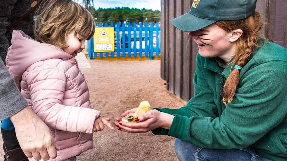 women showing a girl a chick