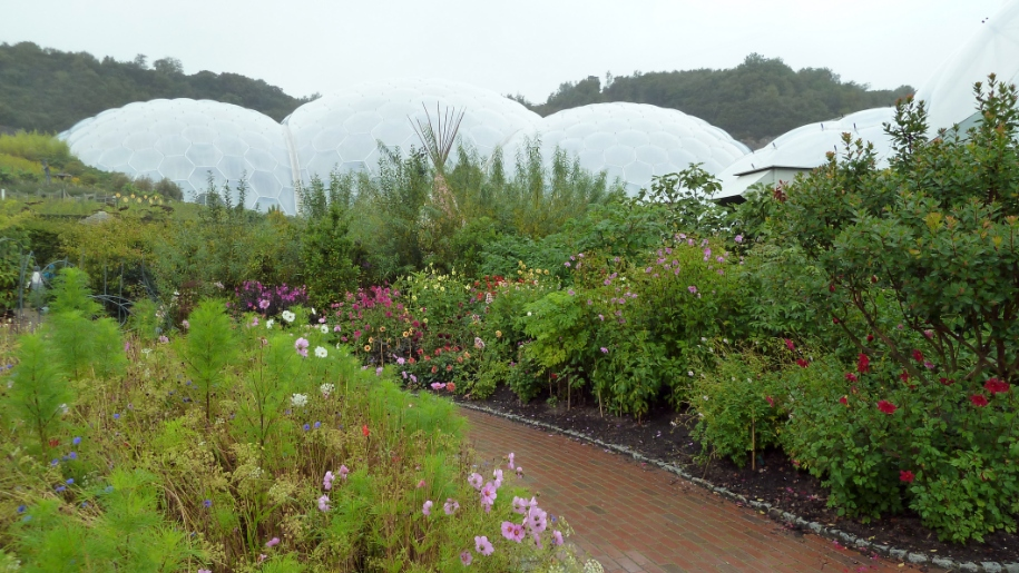 eden project gardens and domes