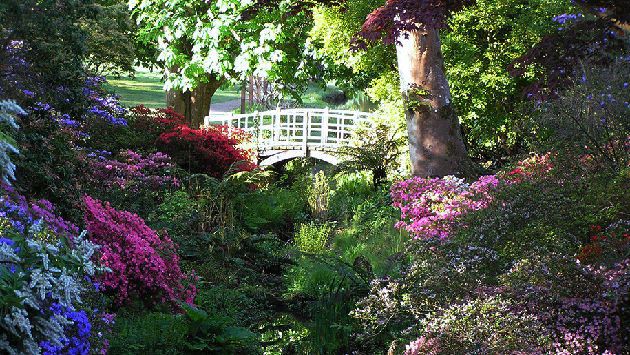 Exbury Gardens and Steam Railway Bridge in garden