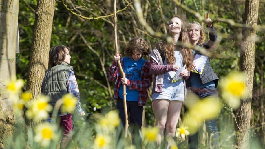 children looking in gardens