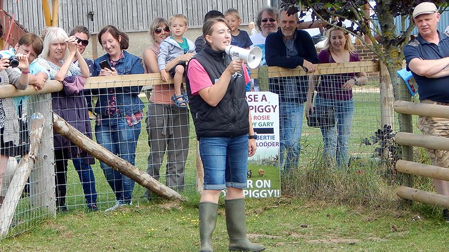 Farmer Palmers Woman in field