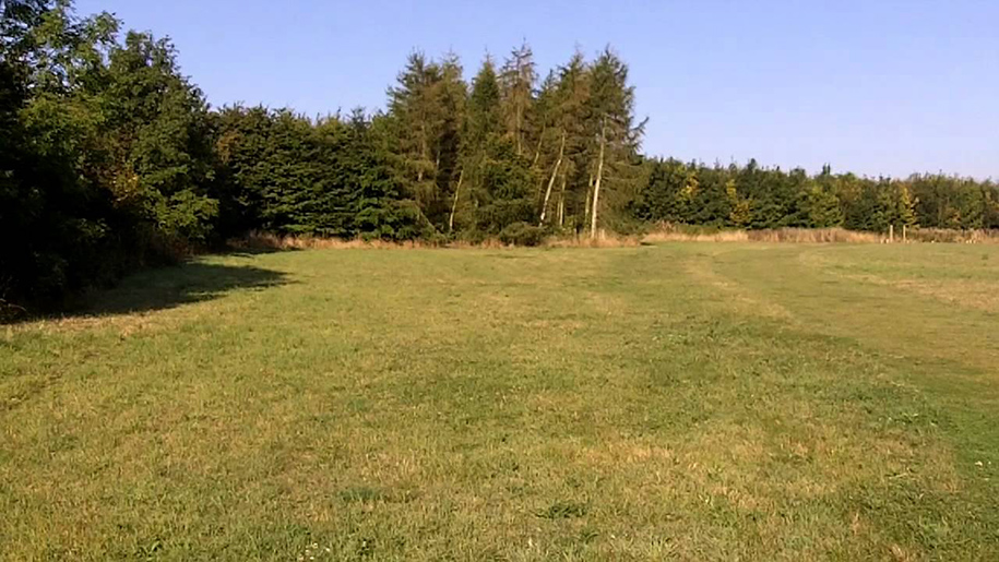 fosse meadows