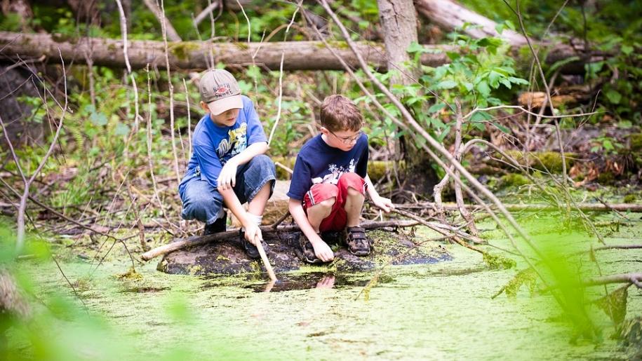 boys pond dipping