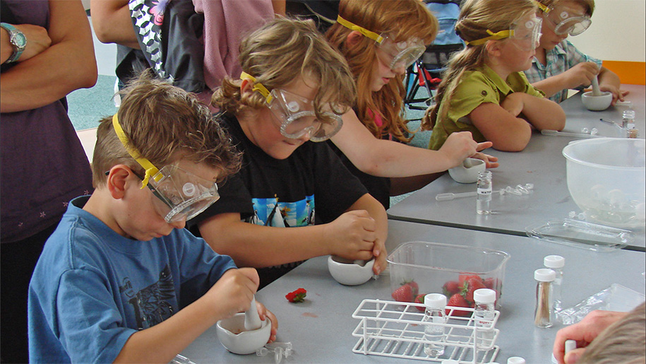 children doing science experiments