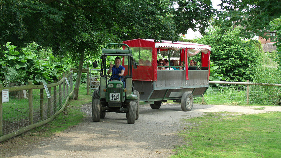 Godstone Farm tractor ride