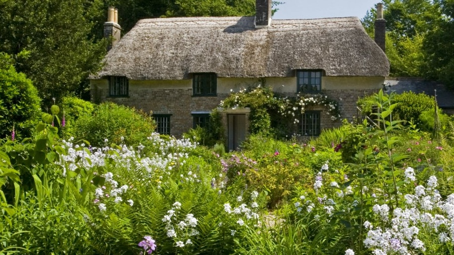 cottage and wildflowers