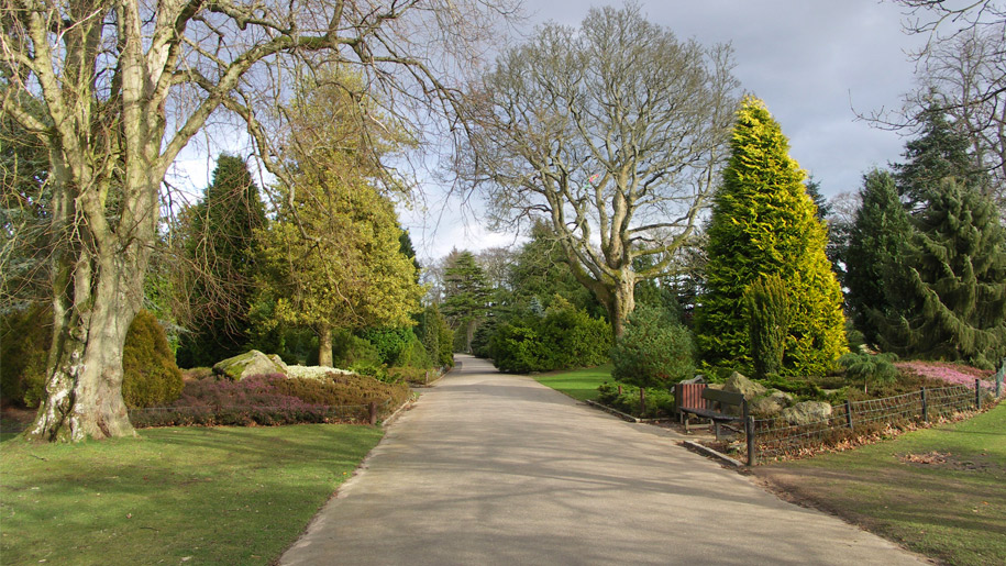 hazlehead park