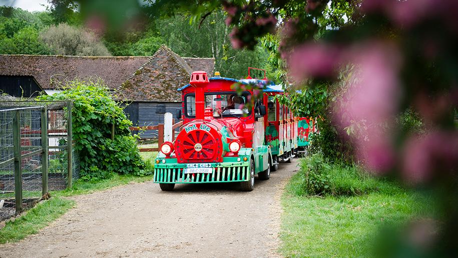 Kent Life train