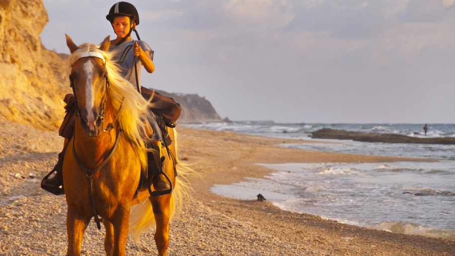 child riding horse on beach