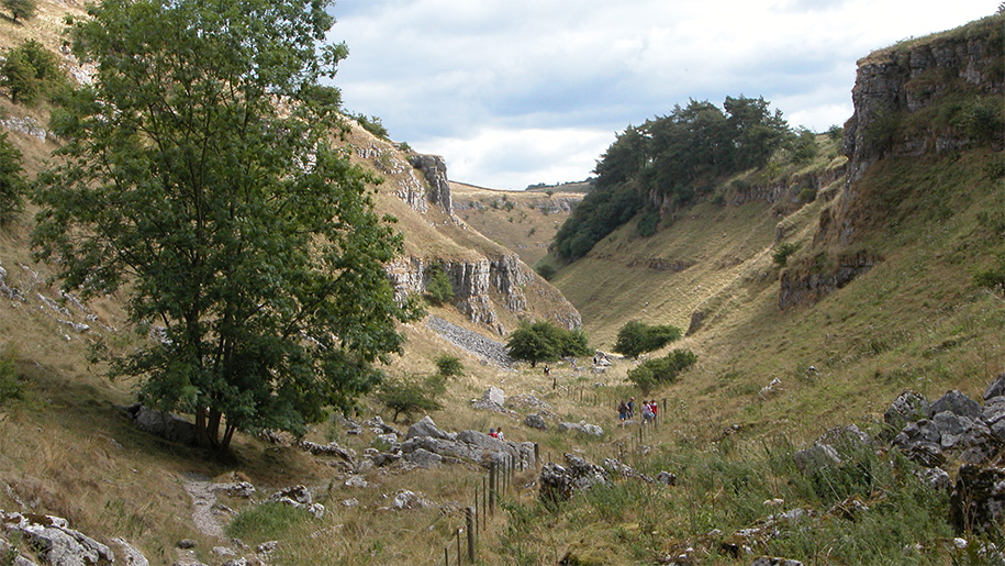 view down the dale