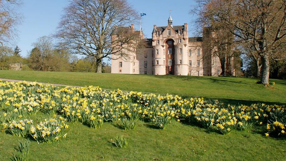 leith hall daffodils