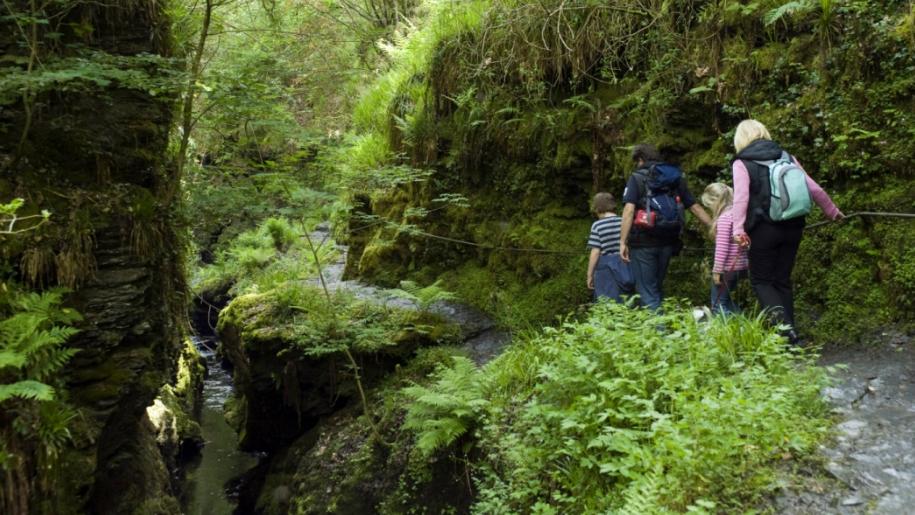 family walking down gorge