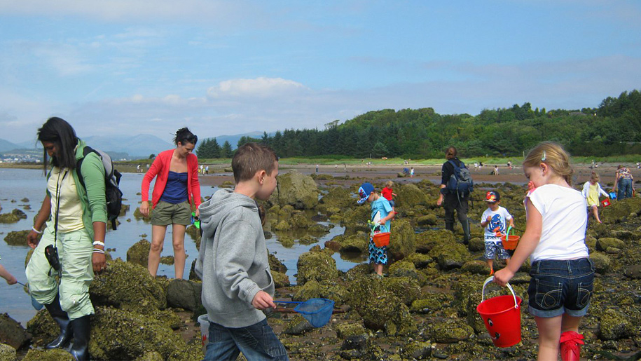 kids in rockpools