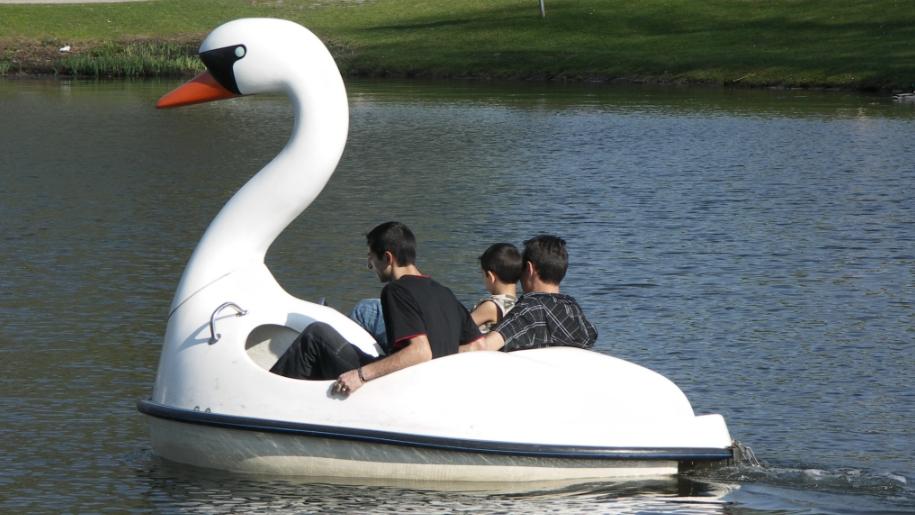 pedalo swan