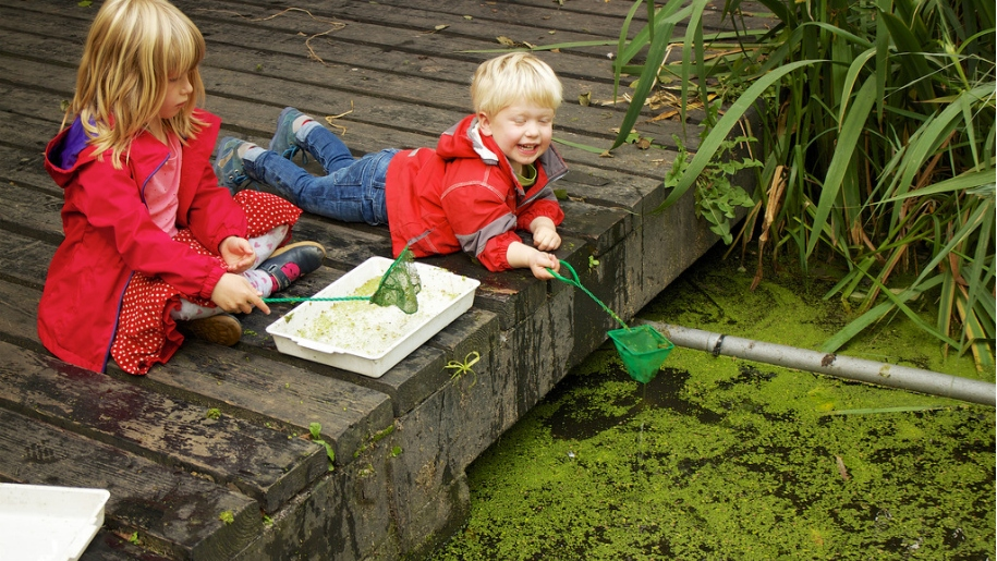 children pond dipping