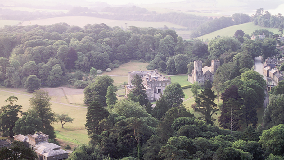 aerial view of house and gardens