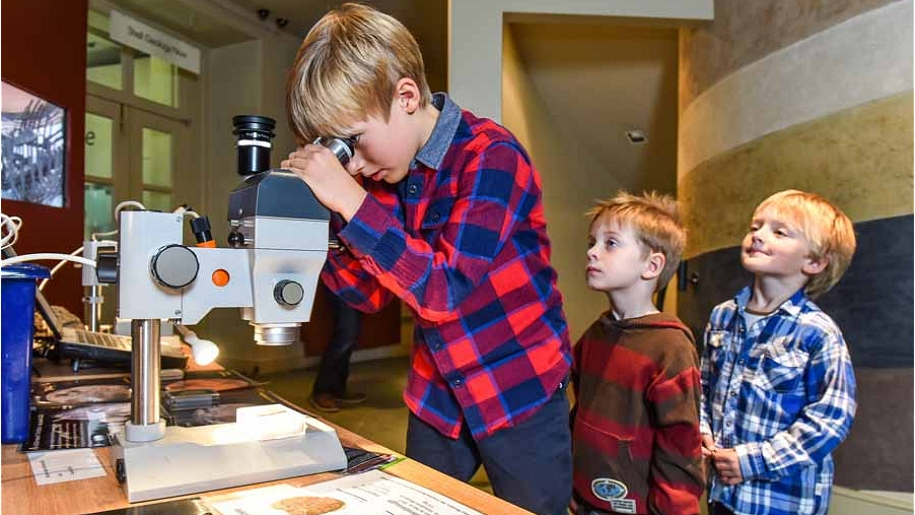 boys looking through microscope