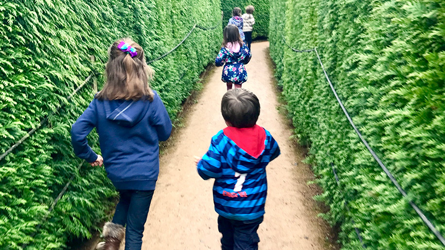 children in maze