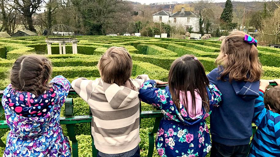 children looking at maze