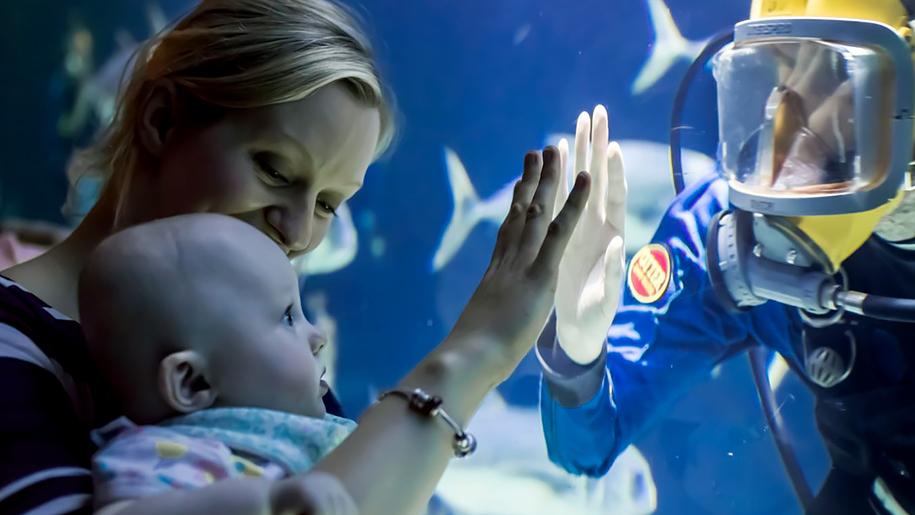 The Deep baby looking at fish