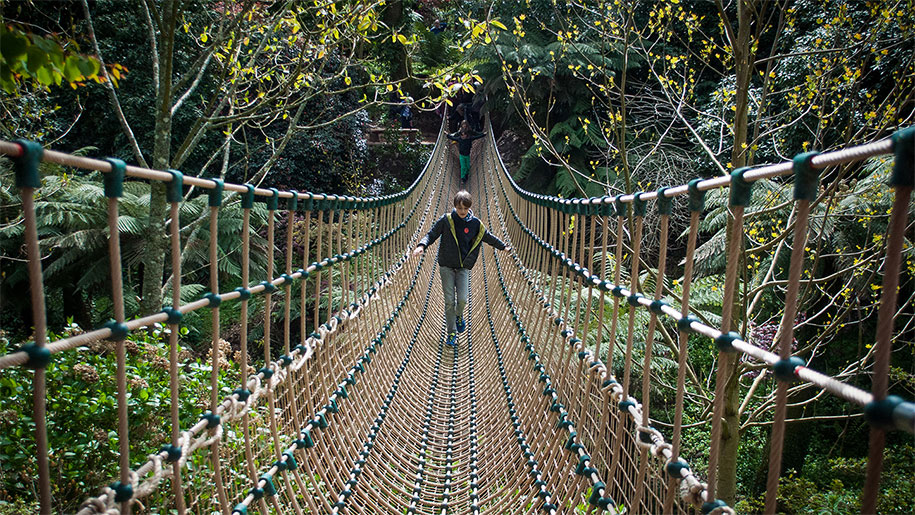boy on rope bridge