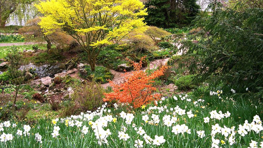 weir garden flowers