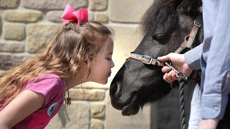 Thornton Hall child with horse