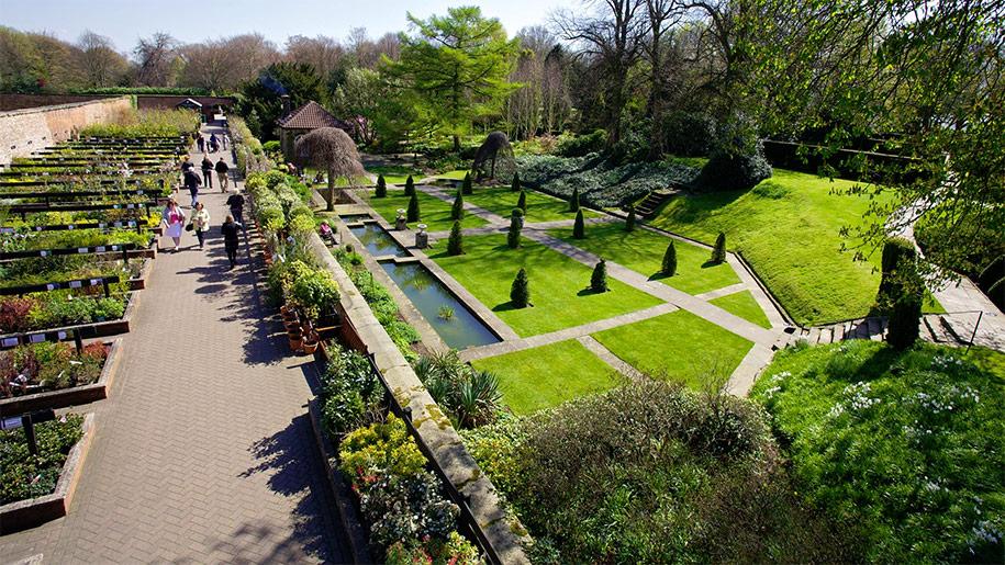 Garden Centre: Wentworth Garden Centre - Places To Go