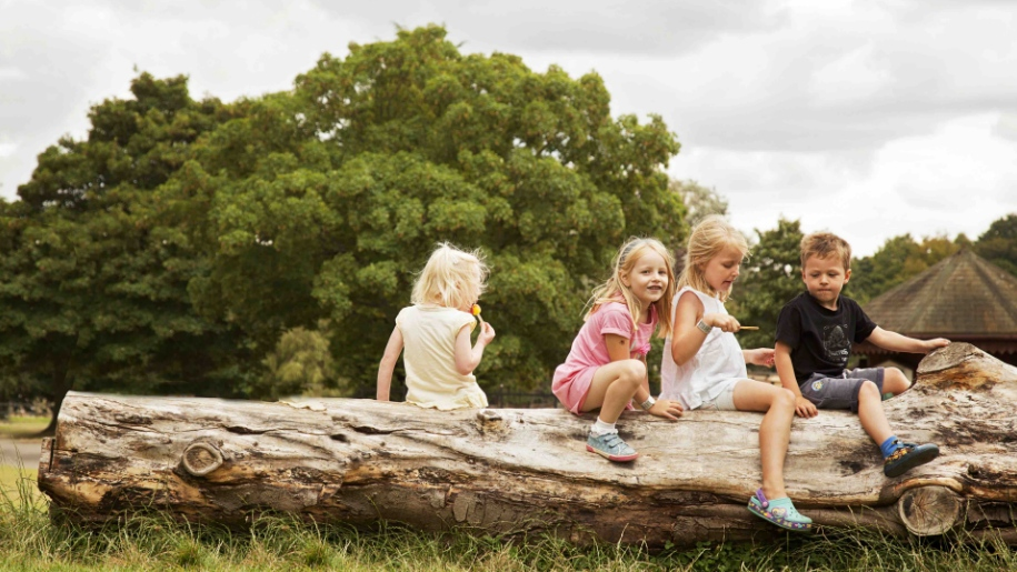 children on tree log